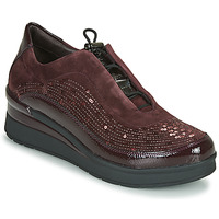 Shoes Women Low top trainers Stonefly CREAM 21 Bordeaux