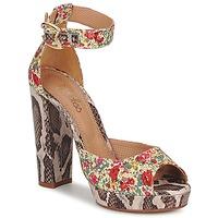 Shoes Women Sandals Maloles PIRIPI Multi