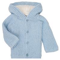 material Boy coats Carrément Beau Y96053 Blue