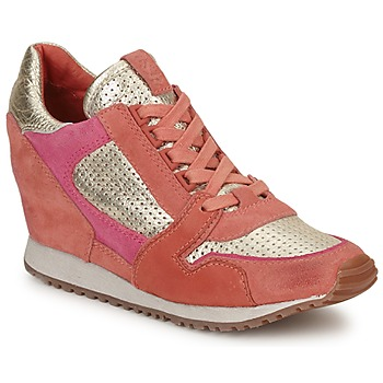 Shoes Women Low top trainers Ash DEAN BIS Gold / Coral / Pink
