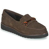 Shoes Women Loafers Damart 62298 Brown