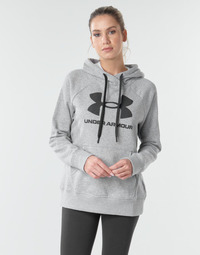material Women sweaters Under Armour RIVAL FLEECE LOGO Grey