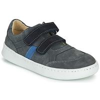 Shoes Boy Low top trainers Citrouille et Compagnie NESTOK Grey / Marine
