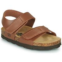 Shoes Boy Sandals Citrouille et Compagnie BELLI JOE Brown