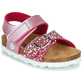 Shoes Girl Sandals Citrouille et Compagnie MIRTINO Pink