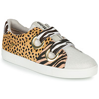 Shoes Women Low top trainers Gioseppo CITRUS Leopard