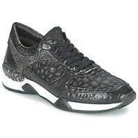 Shoes Women Low top trainers Mjus KRUPA Black