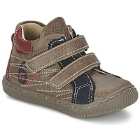 Shoes Boy High top trainers Citrouille et Compagnie THEO Taupe