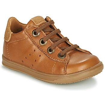 Shoes Boy Low top trainers Little Mary DUSTIN Cognac