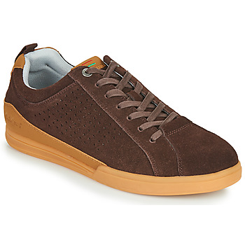 Shoes Men Low top trainers Kickers TAMPA Brown