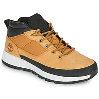 Shoes Men Low top trainers Timberland SPRINT TREKKER SUPER OX Wheat