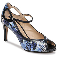 Shoes Women Court shoes Perlato 11793-SUMATRA-JEANS-JAMAICA-RIVER Python / Blue