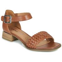 Shoes Women Sandals Caprice 28208-303 Cognac