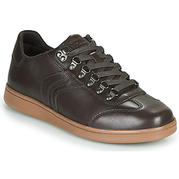 Shoes Men Low top trainers Geox U WARRENS Brown