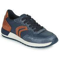 Shoes Boy Low top trainers Geox J ALBEN BOY Blue