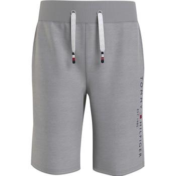 material Boy Shorts / Bermudas Tommy Hilfiger BAHAMA Grey