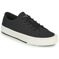 Shoes Men Low top trainers Levi's SUMMIT LOW Black