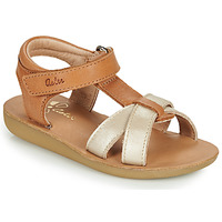 Shoes Girl Sandals Aster TERRY Camel / Gold