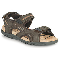 Shoes Men Sports sandals Geox UOMO SANDAL STRADA D Brown / Beige