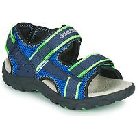 Shoes Boy Sports sandals Geox JR SANDAL STRADA Blue / Green