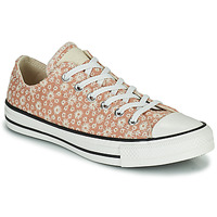 Shoes Women Low top trainers Converse CHUCK TAYLOR ALL STAR CANVAS BRODERIE OX Beige