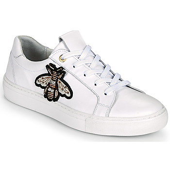 Shoes Women Low top trainers Myma PIGGA White