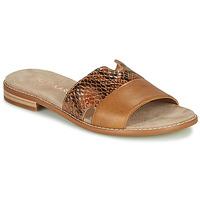 Shoes Women Mules Karston XAPLINA Brown