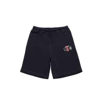 material Boy Shorts / Bermudas Diesel PEDDY Blue
