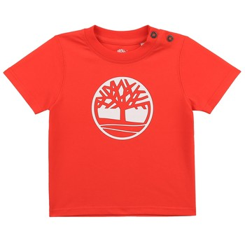 material Boy short-sleeved t-shirts Timberland SITTA Red
