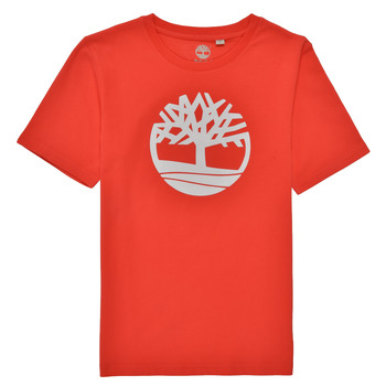material Boy short-sleeved t-shirts Timberland LOLLA Red
