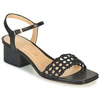 Shoes Women Sandals Unisa KEMPIS Black