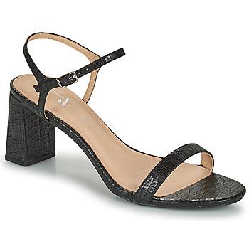 Shoes Women Sandals Vanessa Wu SD2210NR Black
