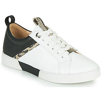 Shoes Women Low top trainers JB Martin GELATO White / Black