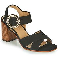 Shoes Girl Sandals JB Martin 1NICKY Black