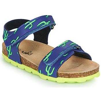 Shoes Boy Sandals Mod'8 KOURTIS Blue / Green