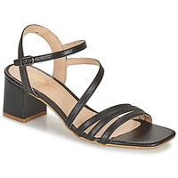 Shoes Women Sandals Betty London OCHANTE Black