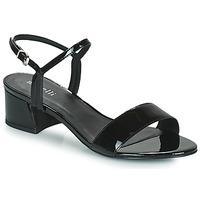 Shoes Women Sandals Minelli HENRIA Black