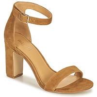 Shoes Women Sandals Minelli BEINTA Brown