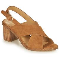 Shoes Women Sandals Minelli CASIMIERA Brown