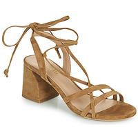 Shoes Women Sandals Minelli TATIA Brown