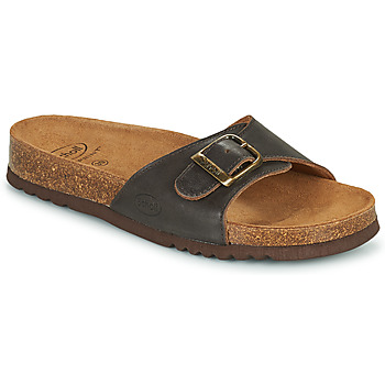 Shoes Mules Scholl AKUMAL Brown