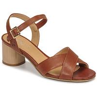 Shoes Women Sandals Dream in Green ODAINE Tan