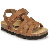 Shoes Boy Sandals Citrouille et Compagnie JANISOL Brown