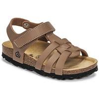 Shoes Boy Sandals Citrouille et Compagnie JANISOL Brown / Taupe