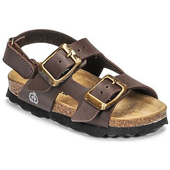 Shoes Boy Sandals Citrouille et Compagnie KELATU Brown