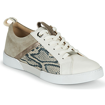 Shoes Women Low top trainers JB Martin GELATO Grey / White