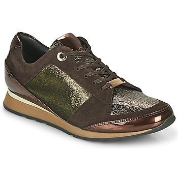Shoes Women Low top trainers JB Martin VILNES Ebony