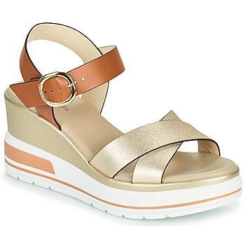 Shoes Women Sandals NeroGiardini TIMEO Beige / Gold / Cognac