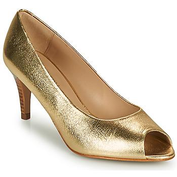 Shoes Women Court shoes JB Martin PARMINA Argan