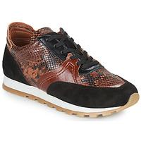 Shoes Women Low top trainers JB Martin GLOIRE Brown